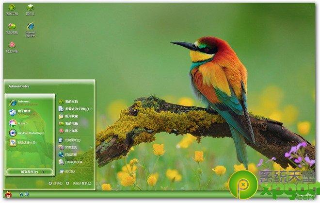 系统天堂鸟儿示春韵主题1